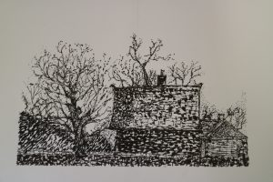Jane May - 3 houses study Pen and Ink